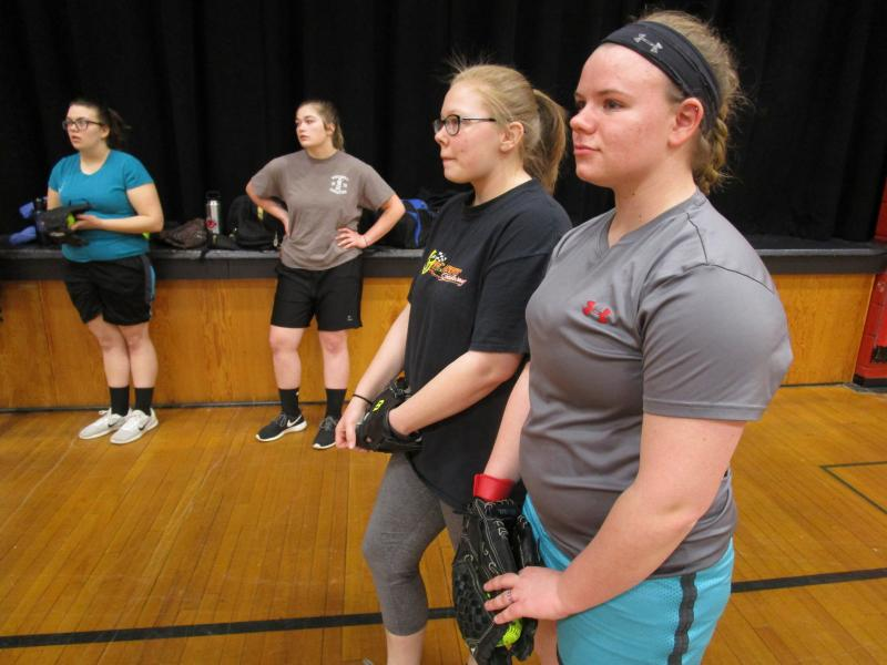 Rebuilding year ahead for Wolverine softball