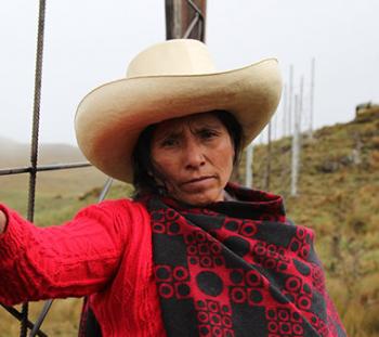 Máxima Acuña of Peru
