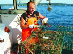 Mike Lewis of East Boothbay lobstering on the Victoria's Secret